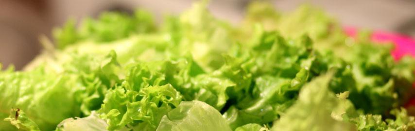 Imagem texto blog Salada verde com alho